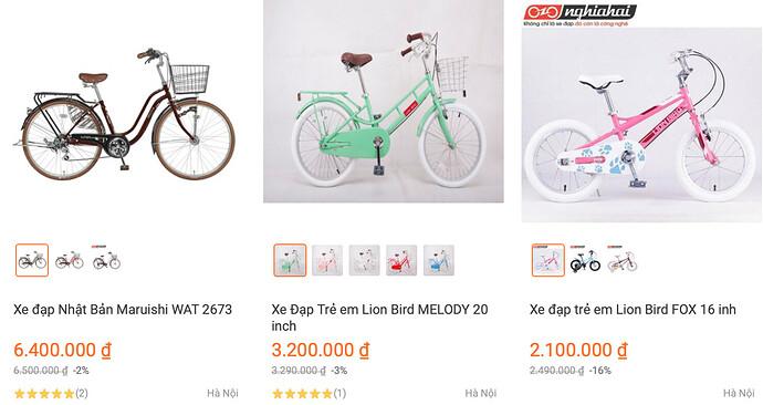 Shop xe đạp Nhật Bản Maruishi